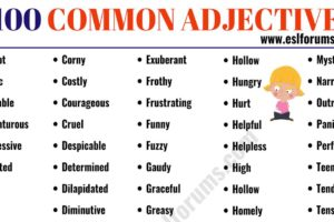 Common Adjectives: List of 100 Useful Adjectives in English 12
