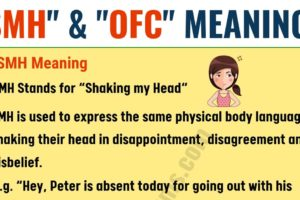 OFC & SMH in Texting: Meaning and Useful Conversation Examples 18
