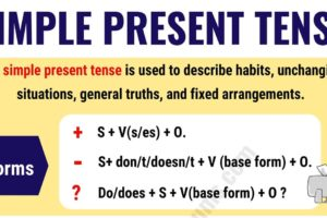 The Simple Present Tense: Useful Usage and Example Sentences 11