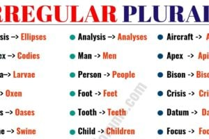 List of 36 Important Irregular Plural Nouns in English 13