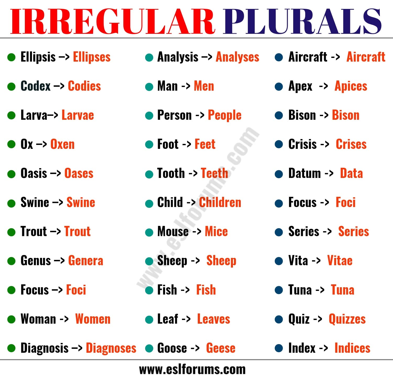 list of 36 important irregular plural nouns in english