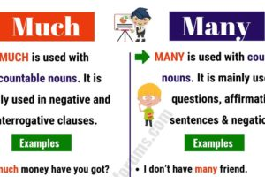 MUCH vs MANY: What Are The Differences between Them? 11