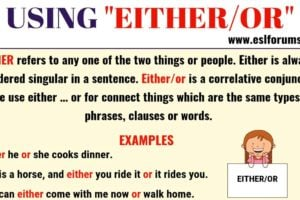 EITHER OR: Usage and Useful Examples in English 19
