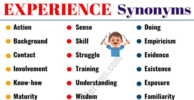 EXPERIENCE Synonym: 40 Useful Synonyms for EXPERIENCE 1