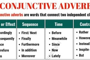 Conjunctive Adverbs: Important List and Examples in English 9
