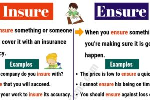 INSURE vs ENSURE: What are the Differences? 19