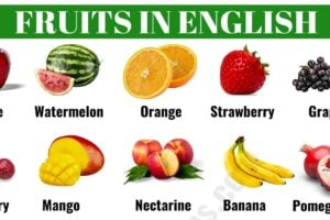 List of Fruits: Learn Common Fruits Names in English 13