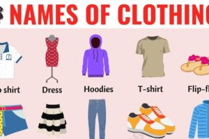Types of Clothing: Useful List of Clothing Names with the Picture 40