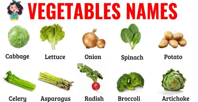 List of Vegetables: Useful Names of Vegetables with the Picture! 1