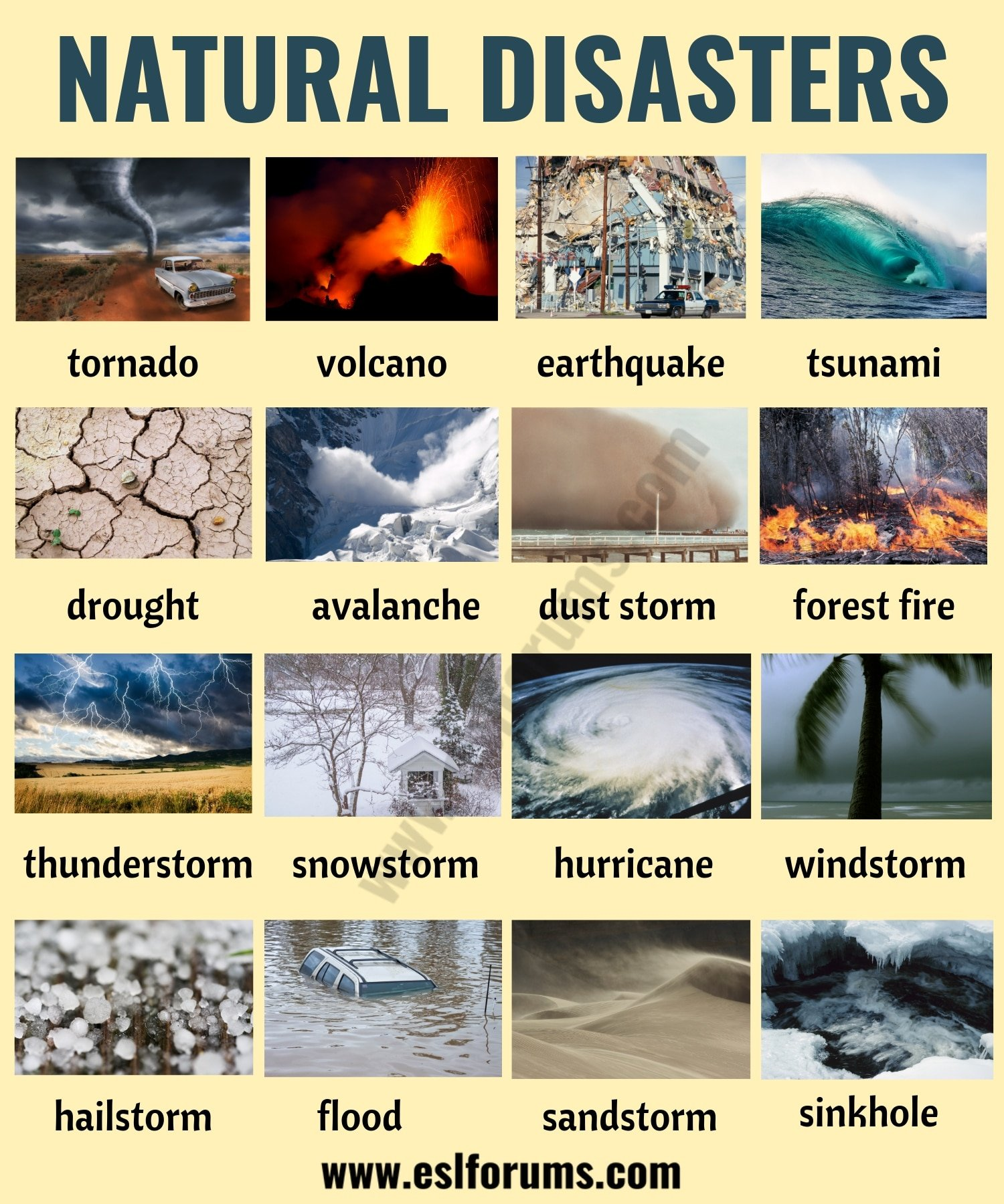 Natural Disasters: Different Types of Natural Disasters with ESL Pictures 18