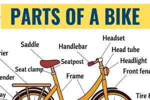 Bicycle Parts: 25+ Important Parts of a Bicycle with ESL Picture 51