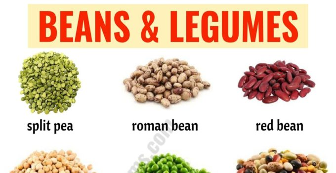Types of Beans: 15 Different Types of Beans & Legumes with the Picture 1