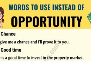 OPPORTUNITY Synonym: List of 15+ Synonyms for Opportunity 11