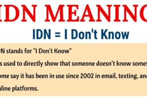 IDN Meaning: What Does IDN Stand for? (with Useful Examples) 11