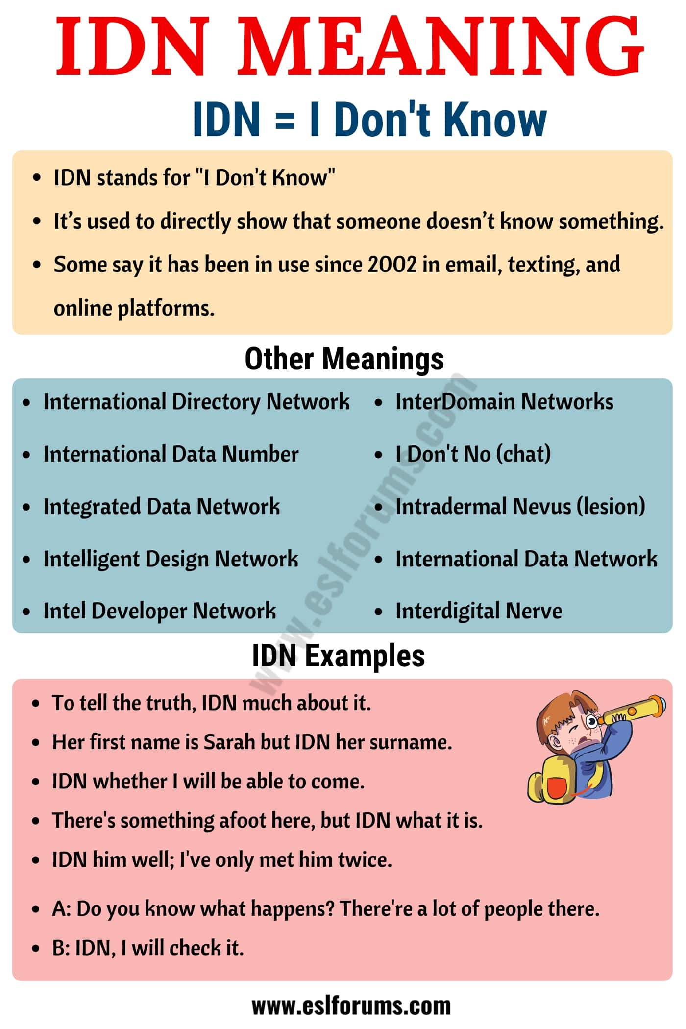 IDN Meaning: What Does IDN Stand for? (with Useful Examples)