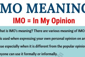 IMO Meaning: What Does IMO Mean? Useful Examples 12