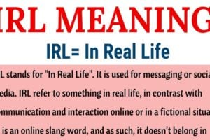 IRL Meaning: What Does IRL Stand for (with Useful Examples) 12