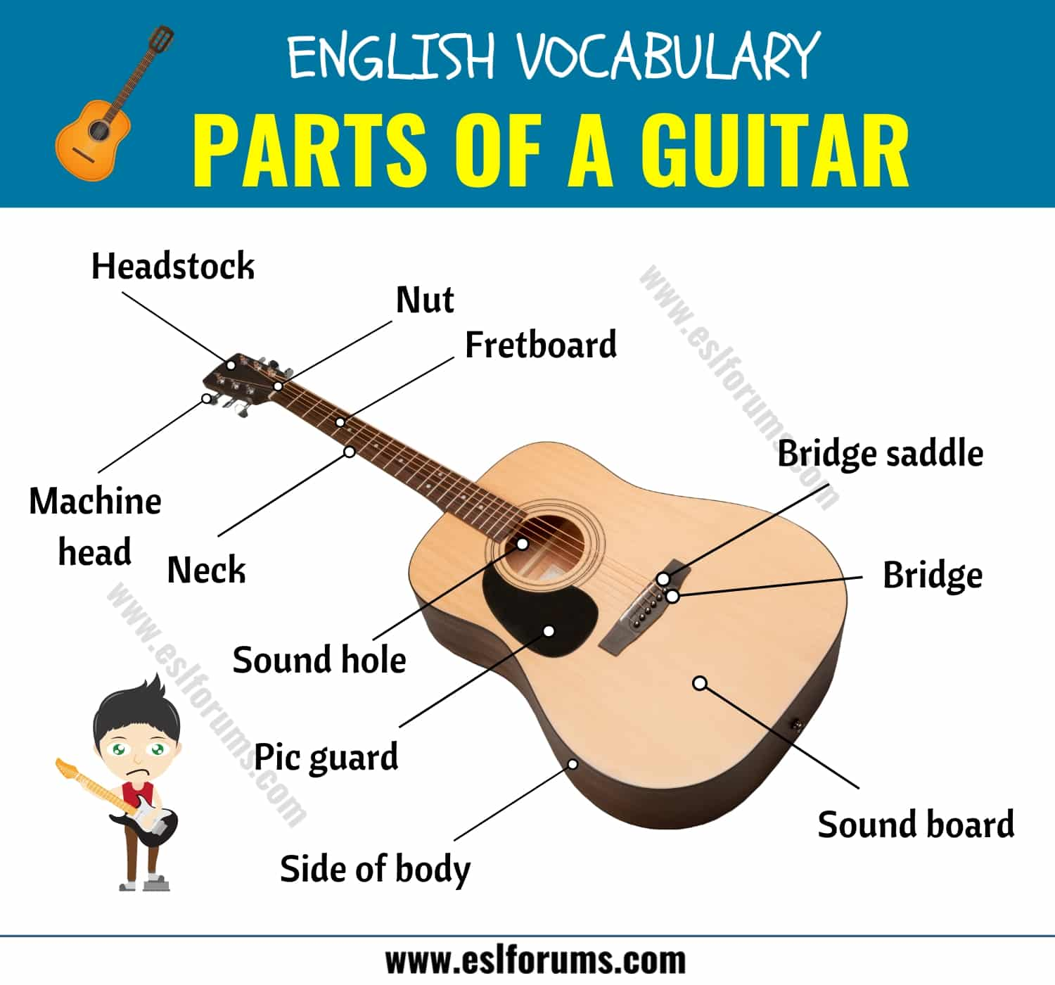 Parts of A Guitar: Different Parts of A Guitar in English with ESL Picture! 2
