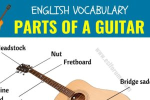 Parts of A Guitar: Different Parts of A Guitar in English with ESL Picture! 11