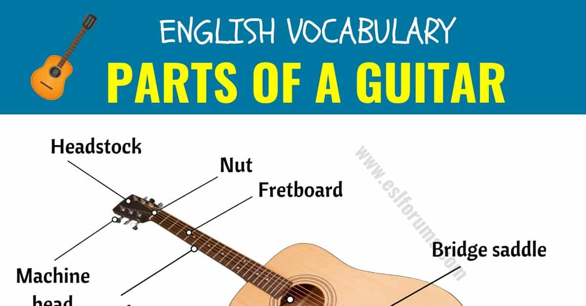 Parts of A Guitar: Different Parts of A Guitar in English with ESL Picture! 1