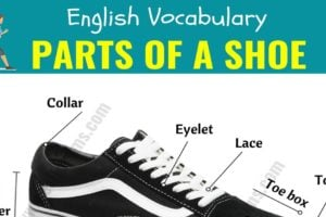 Parts of A Shoe: Different Parts of a Shoe with ESL Picture! 48