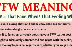 TFW Meaning: What Does TFW Mean? Useful Examples 8