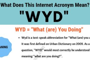 "WYD Meaning: What Does This Useful Slang Acronym ""WYD"" Mean and Stand For? 11"