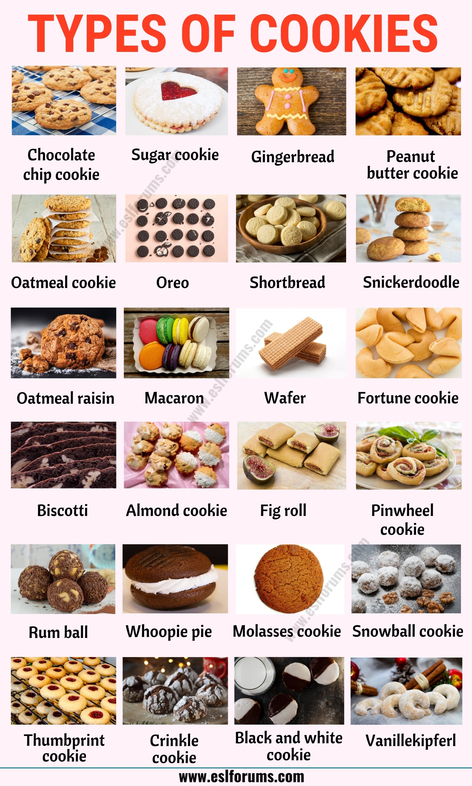 Types of Cookies: List of 20+ Different Types of Cookies with ESL Picture!