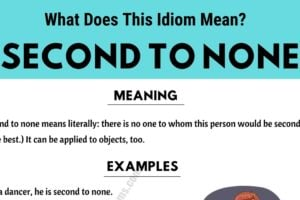 Second To None: What Does This Useful Idiom Mean? 9