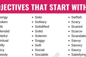 Adjectives that Start with S: List of 250+ S Adjectives with Useful Examples 13
