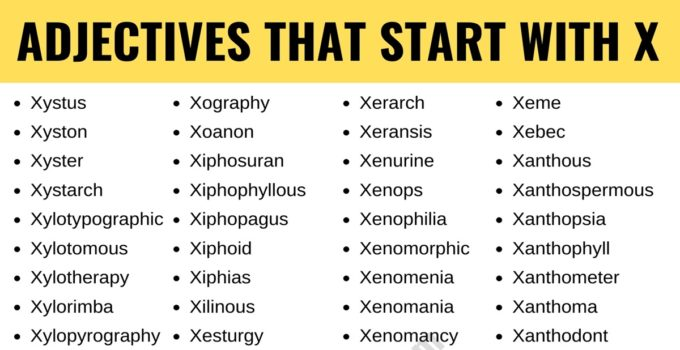 Adjectives that Start with X: List of 90+ Adjectives Starting with X in English 1