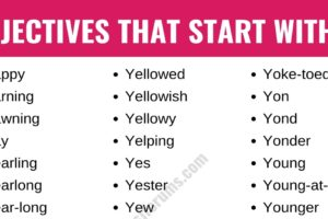 Adjectives that Start with Y: List of 40+ Adjectives Starting with Y in English 13