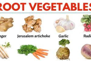 Root Vegetables: List of 20 Root Vegetables with ESL Picture! 7