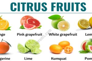 Citrus Fruits: List of 15+ Citrus Fruits with ESL Picture and Example Sentences 50