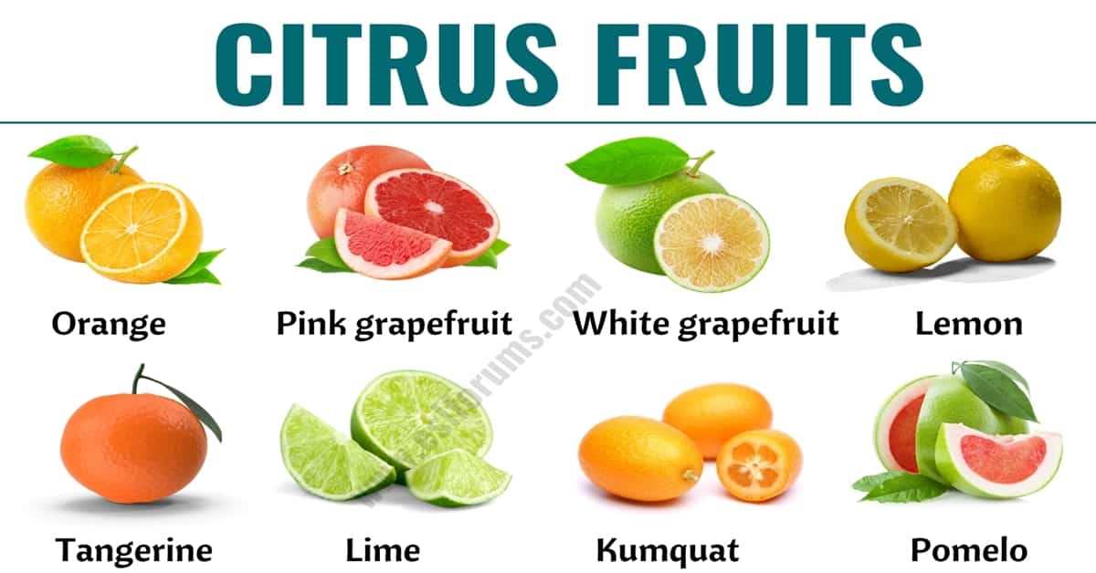 Citrus Fruits: List of 15+ Citrus Fruits with ESL Picture and Example Sentences 9