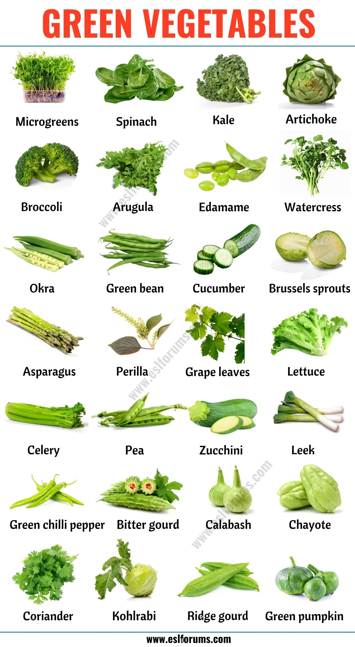 Green Vegetables: List of 28 Green Vegetables in English with ESL Picture!