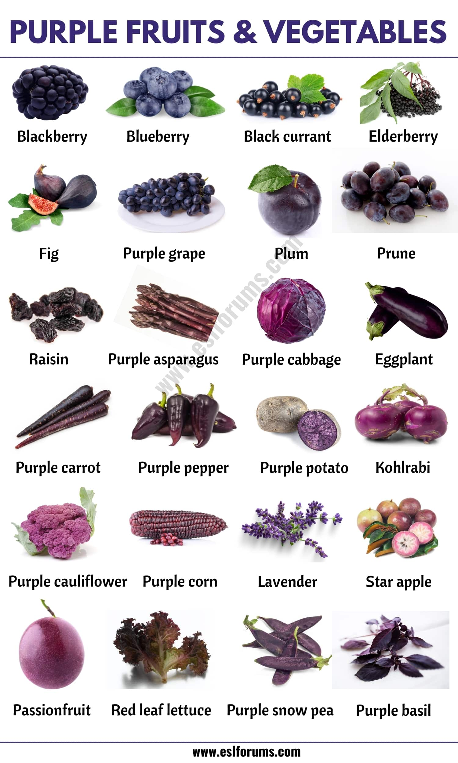 Purple Vegetables: List of 24 Purple Fruits and Vegetables in English