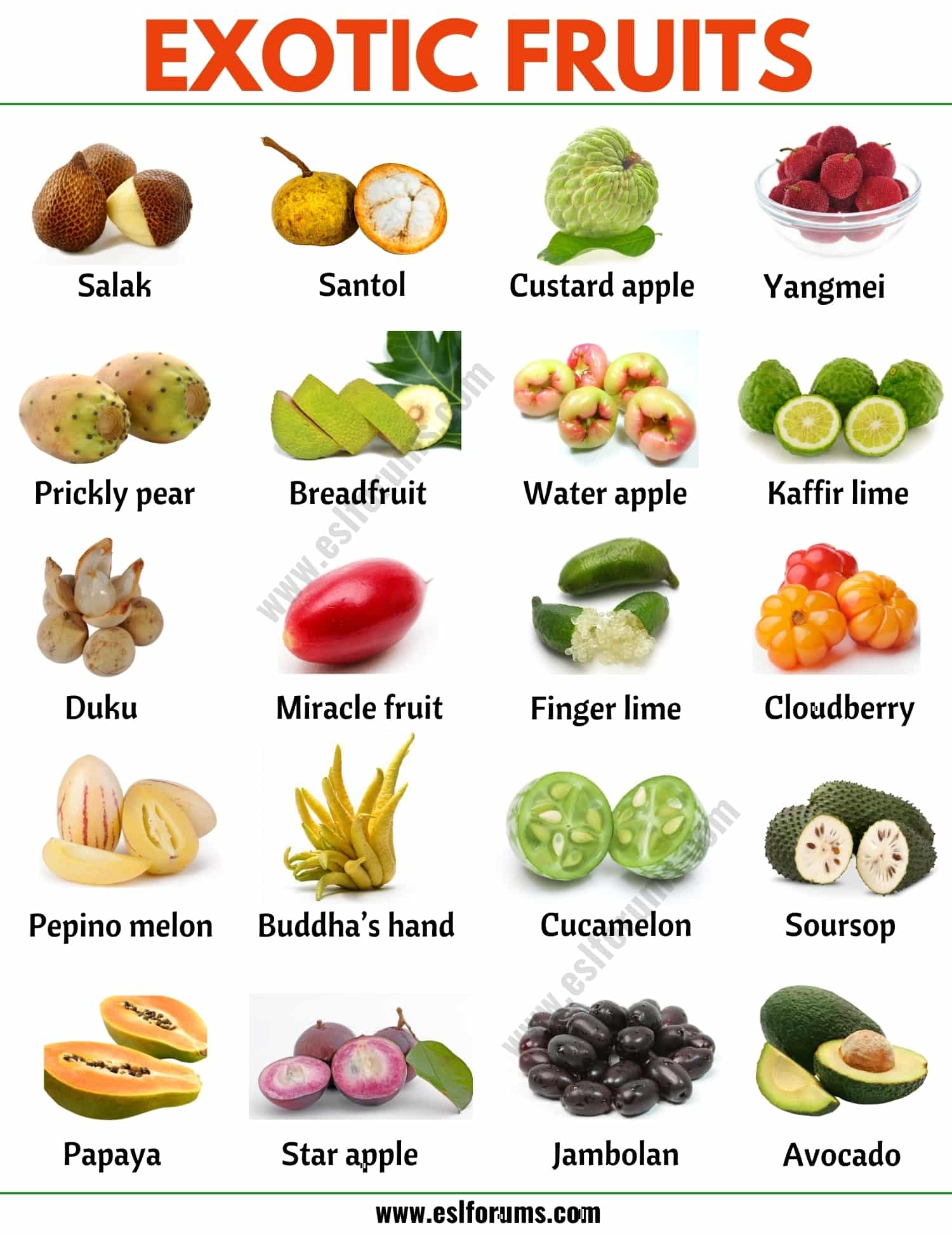 Exotic Fruits: List of 45+ Exotic Fruits from All Around the World