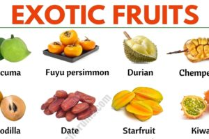 Exotic Fruits: List of 45+ Exotic Fruits From All Around the World 13