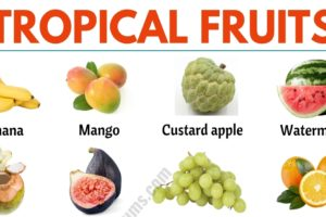 Tropical Fruits: List of 25+ Popular Tropical Fruits in English 3