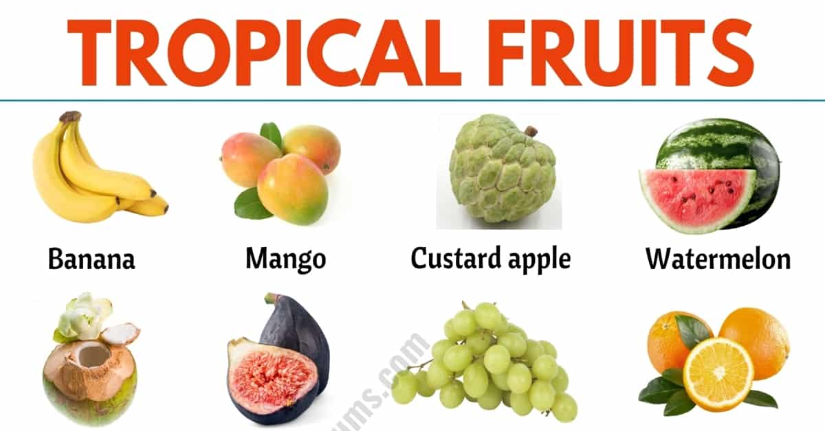 Tropical Fruits: List of 25+ Popular Tropical Fruits in English 4