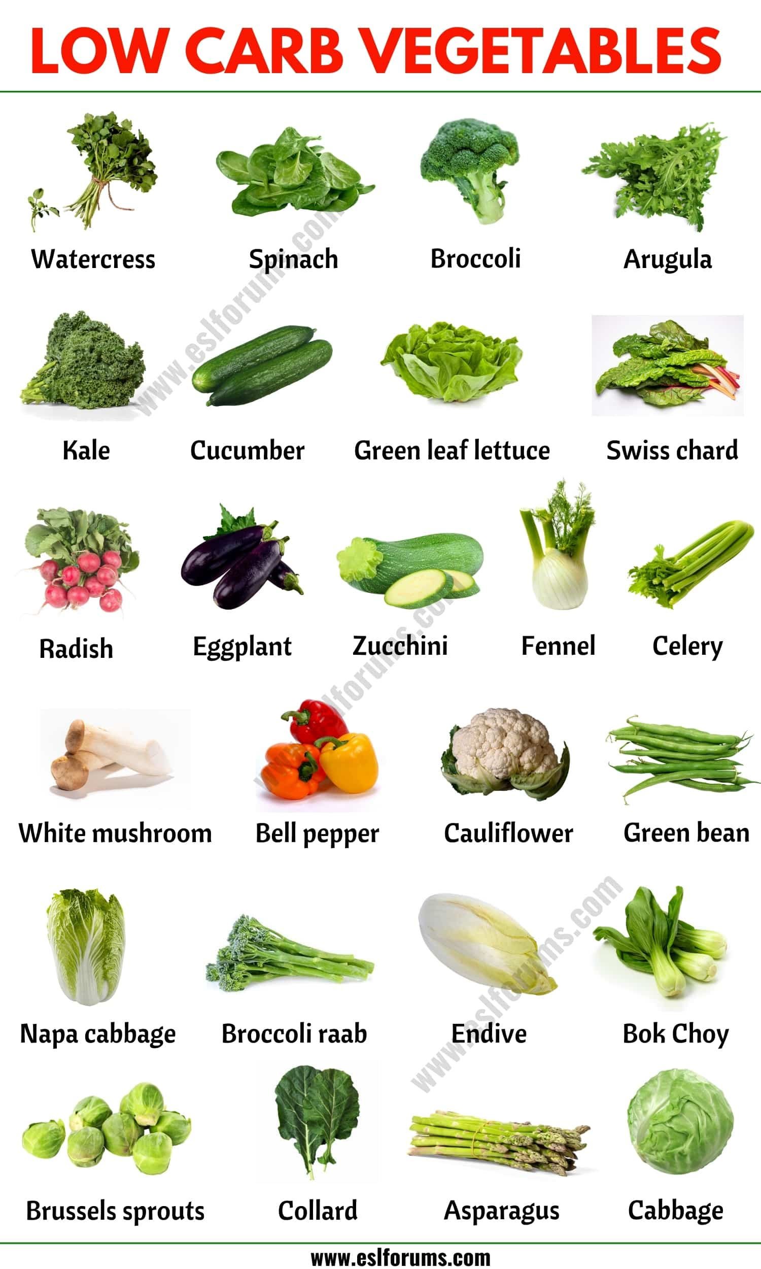 Low Carb Vegetables: A Guide to The Best Low-Carb Vegetables