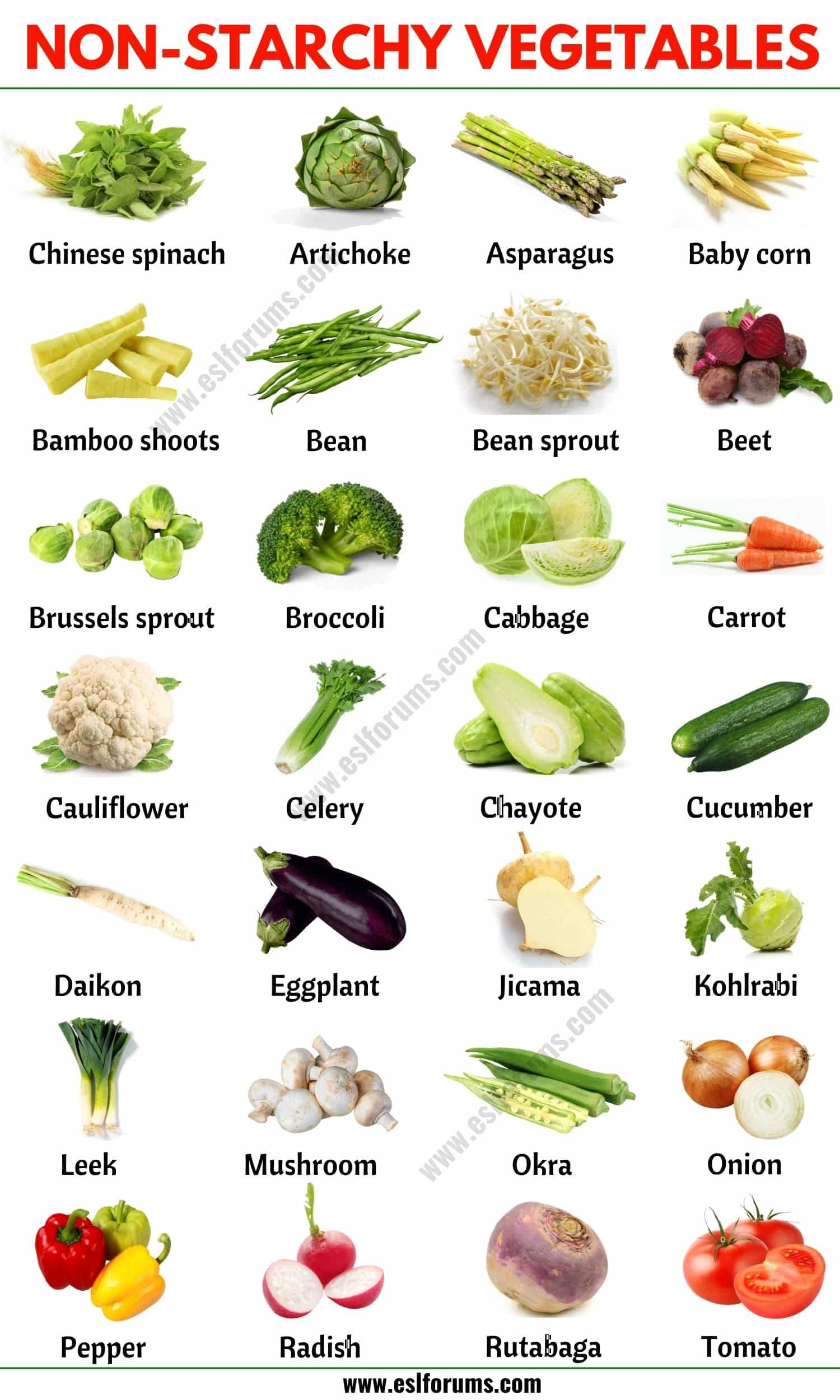 Non Starchy Vegetables: List of Non-starchy Vegetables with the Picture!